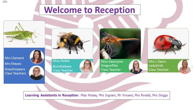 Reception Teacher Page